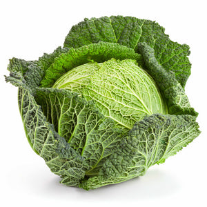 Savoy Cabbage - Each - SW Coast Refills