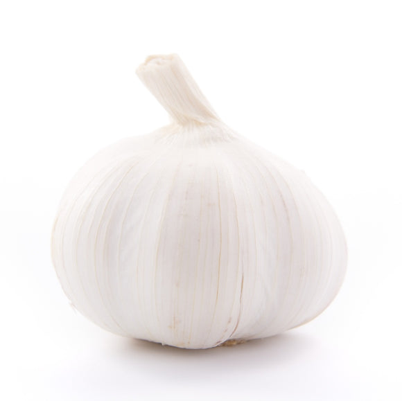 Garlic Bulb - Each - SW Coast Refills