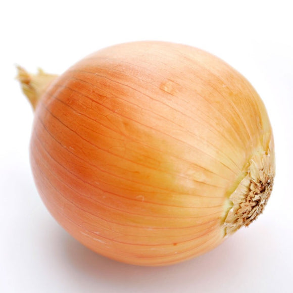 Brown Onions - 400g - SW Coast Refills