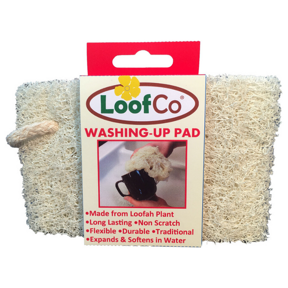 LoofCo Washing-Up Pad - SW Coast Refills
