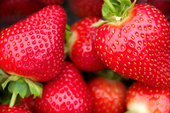 Local Strawberry Punnet New Forest - 227g