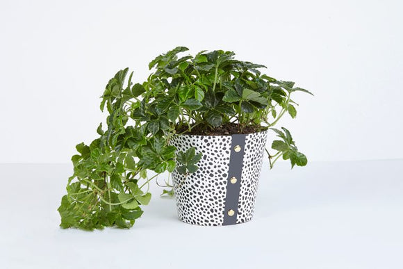 Large Plant Pot Cover