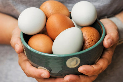 What are the Healthiest Eggs to Eat?