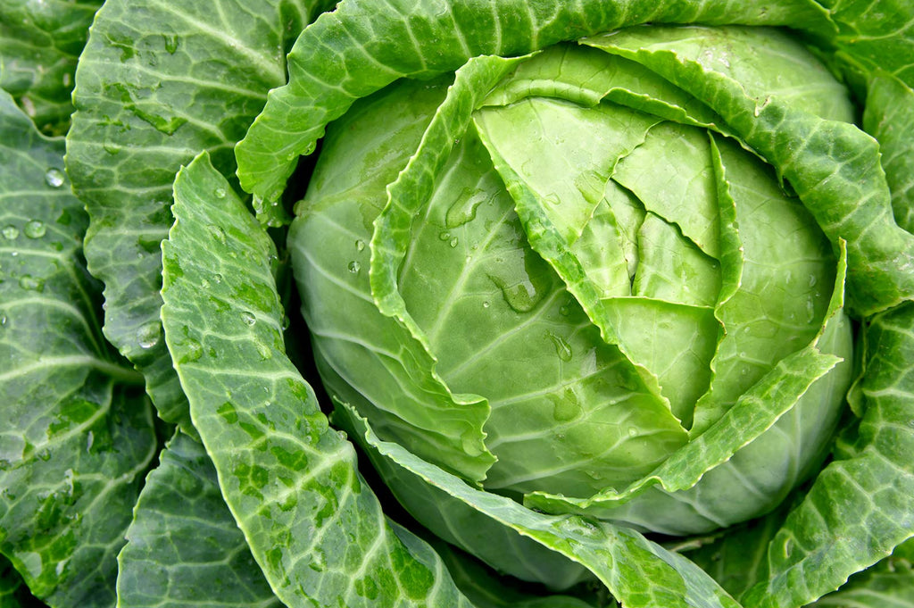 How To Cook With Cabbage