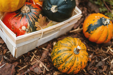 Red, green, and orange pumpkins stored in a crate