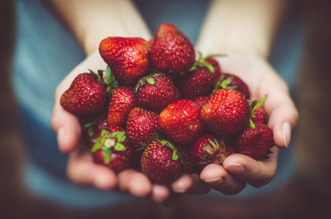 A close-up of a woman's hands, holding a big pile of strawberries