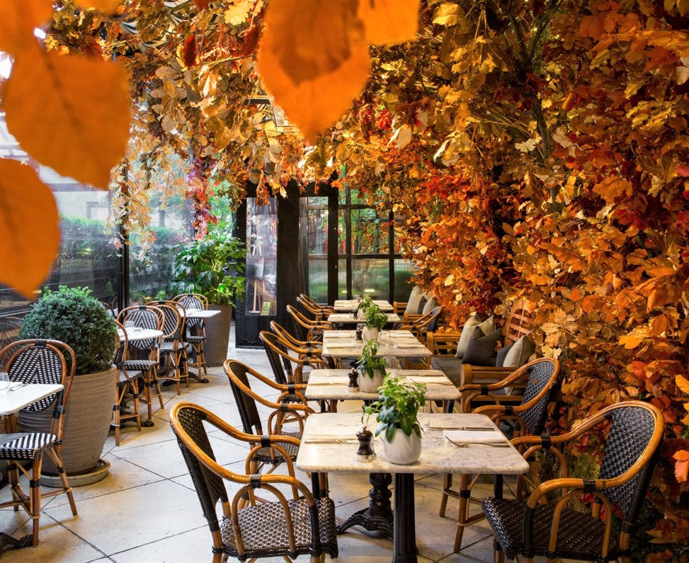 restaurant terrace covered in autumn foliage and orange leaves