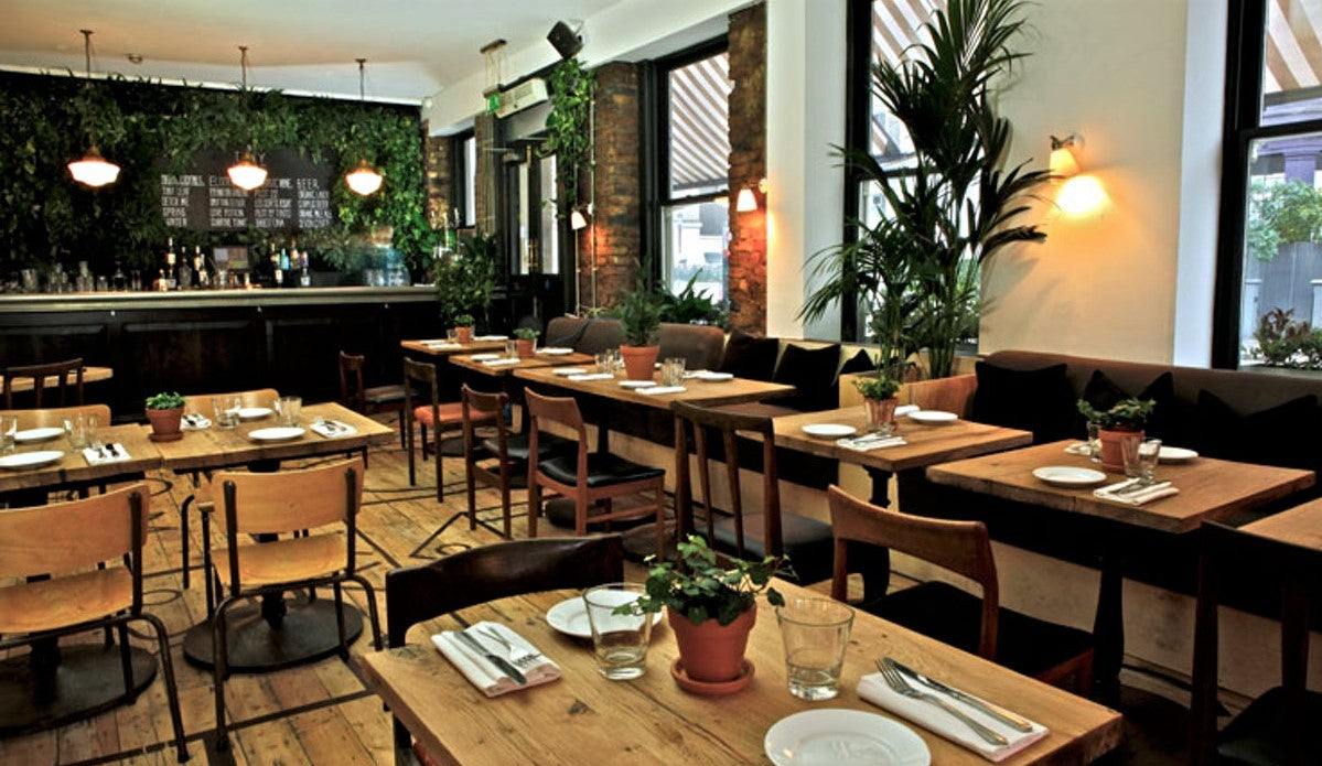 unique restaurant layout with small trees along the wall