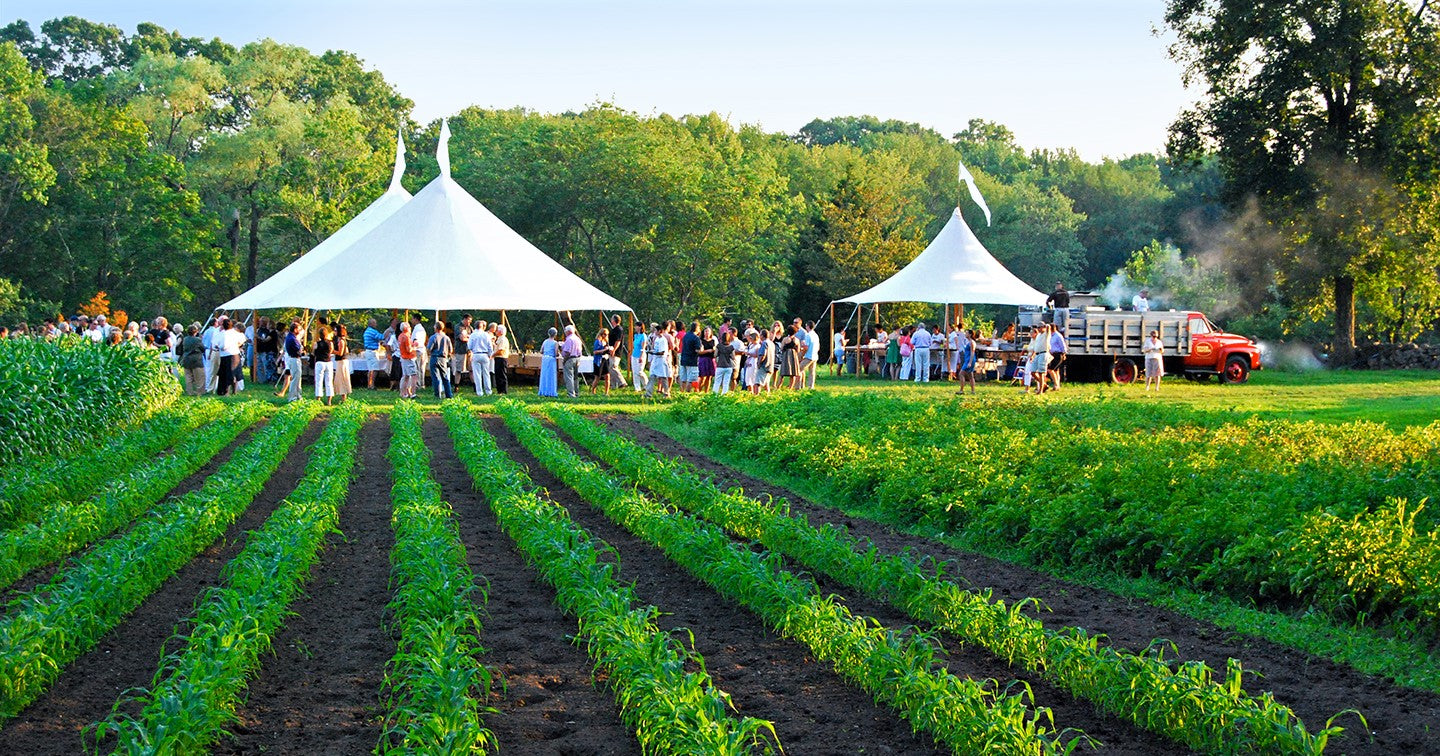 large party of outdoor diners gather under white marquee next to green field