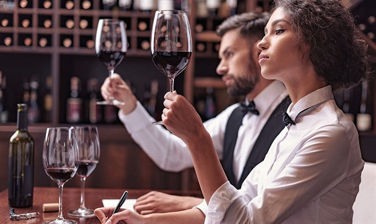 pair of wine experts examine glasses of red wine in restaurant cellar