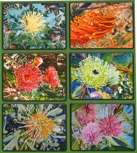 Wildflower Placemats - Outback Creative Gifts