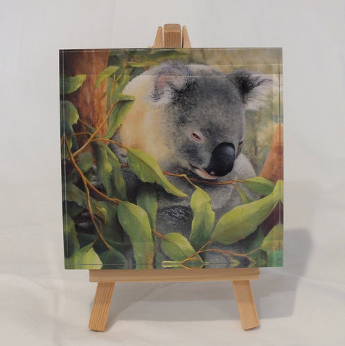 Crystal Block - 'Koala' - Outback Creative Gifts