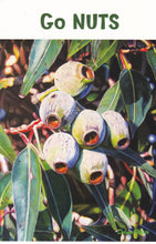 Load image into Gallery viewer, Greeting Card - Nuts 'n' Leaves - Outback Creative Gifts