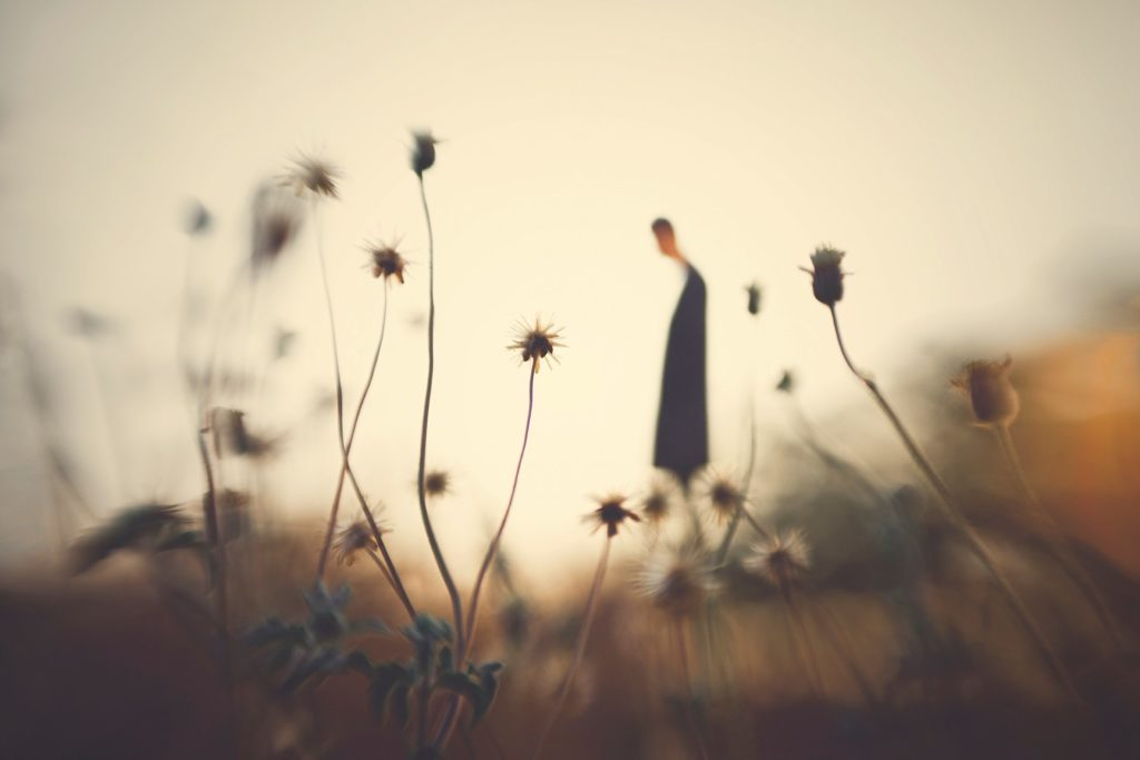 Hengki Lee Lensbaby Sweet 50
