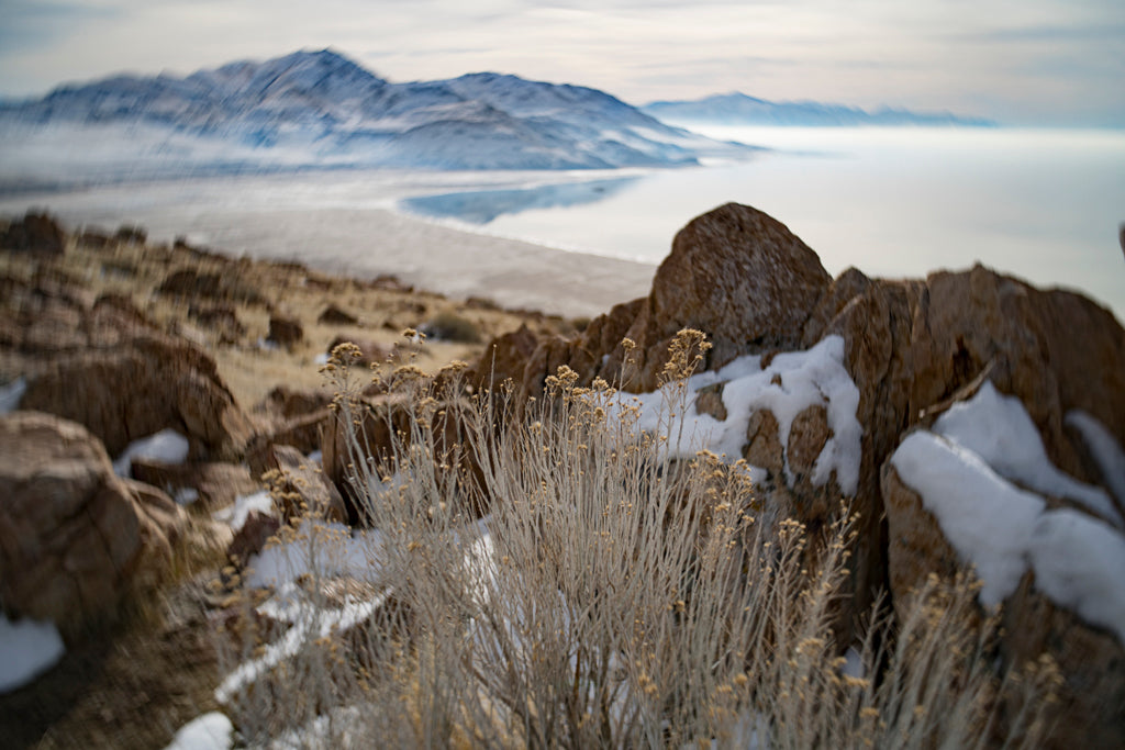 winter mountains lake snow grass landscape photography Lensbaby featured photos