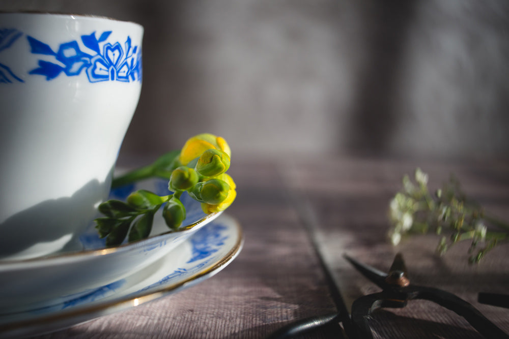 blue and white china cup and saucer yellow flower on wood Janet Broughton Still Life