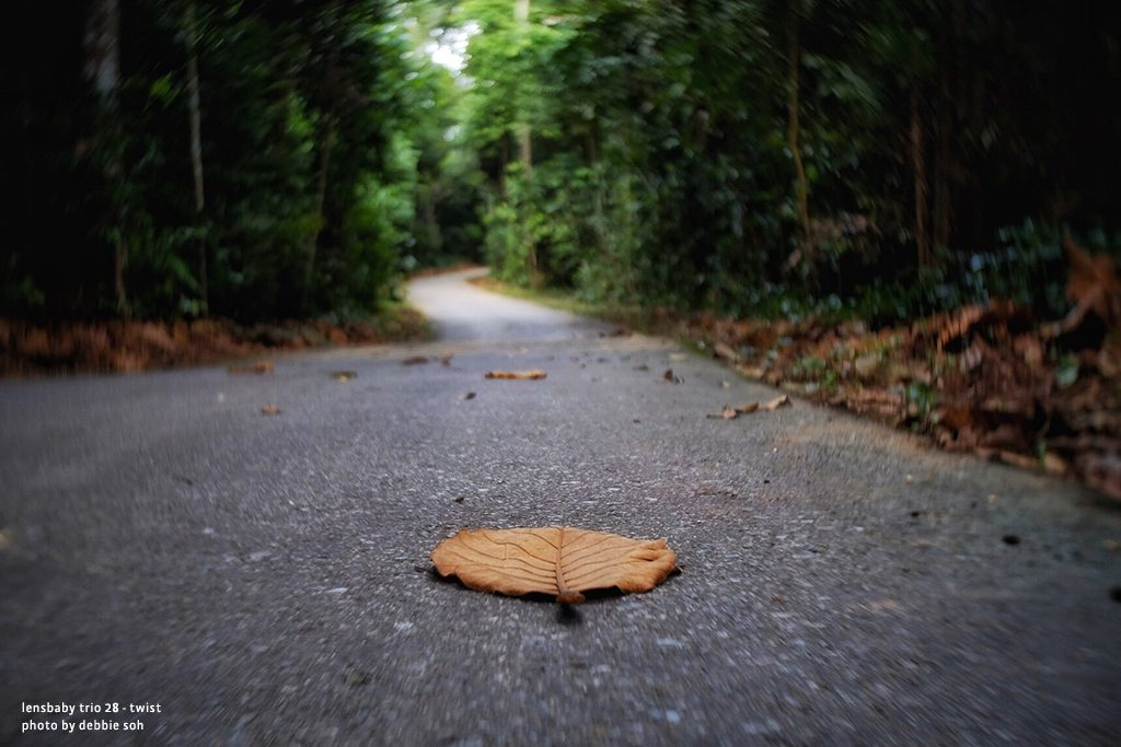 Solitary fall leaf in empty road autumn Debbie Soh with Trio 28 Lensbaby Creative Photography