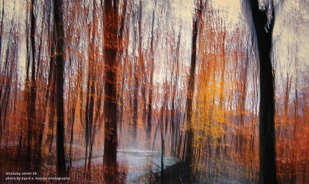 landscape fall colors fall trees photo painting texture forest woods lensbaby manifesto enemy of perfection