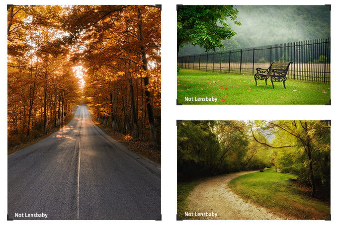 Lensbaby Artists Teo Kefalopoulos photo collage fall foliage nature path bench