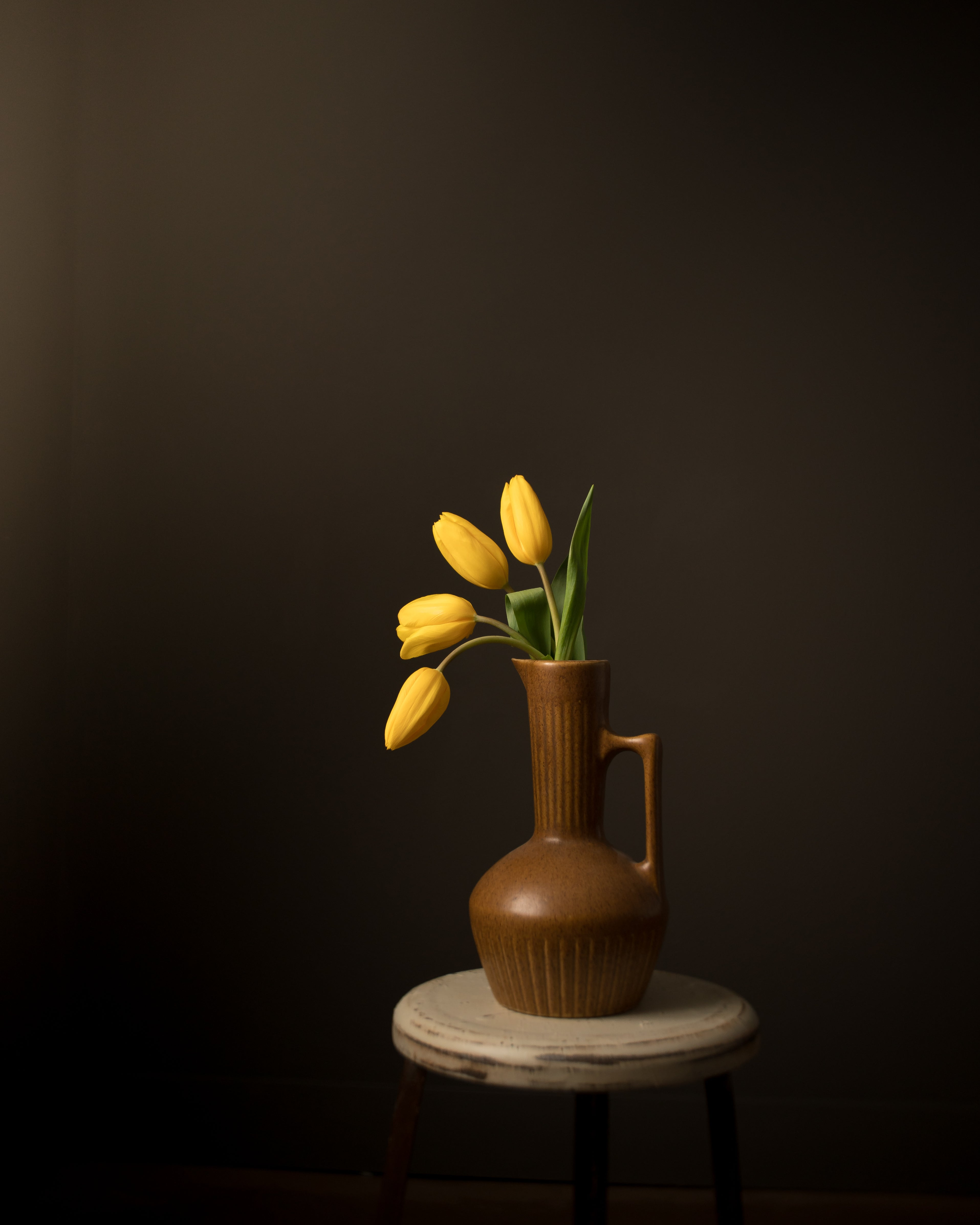 yellow tulips curving out of a brown vase bright yellow caroline jensen burnside 35