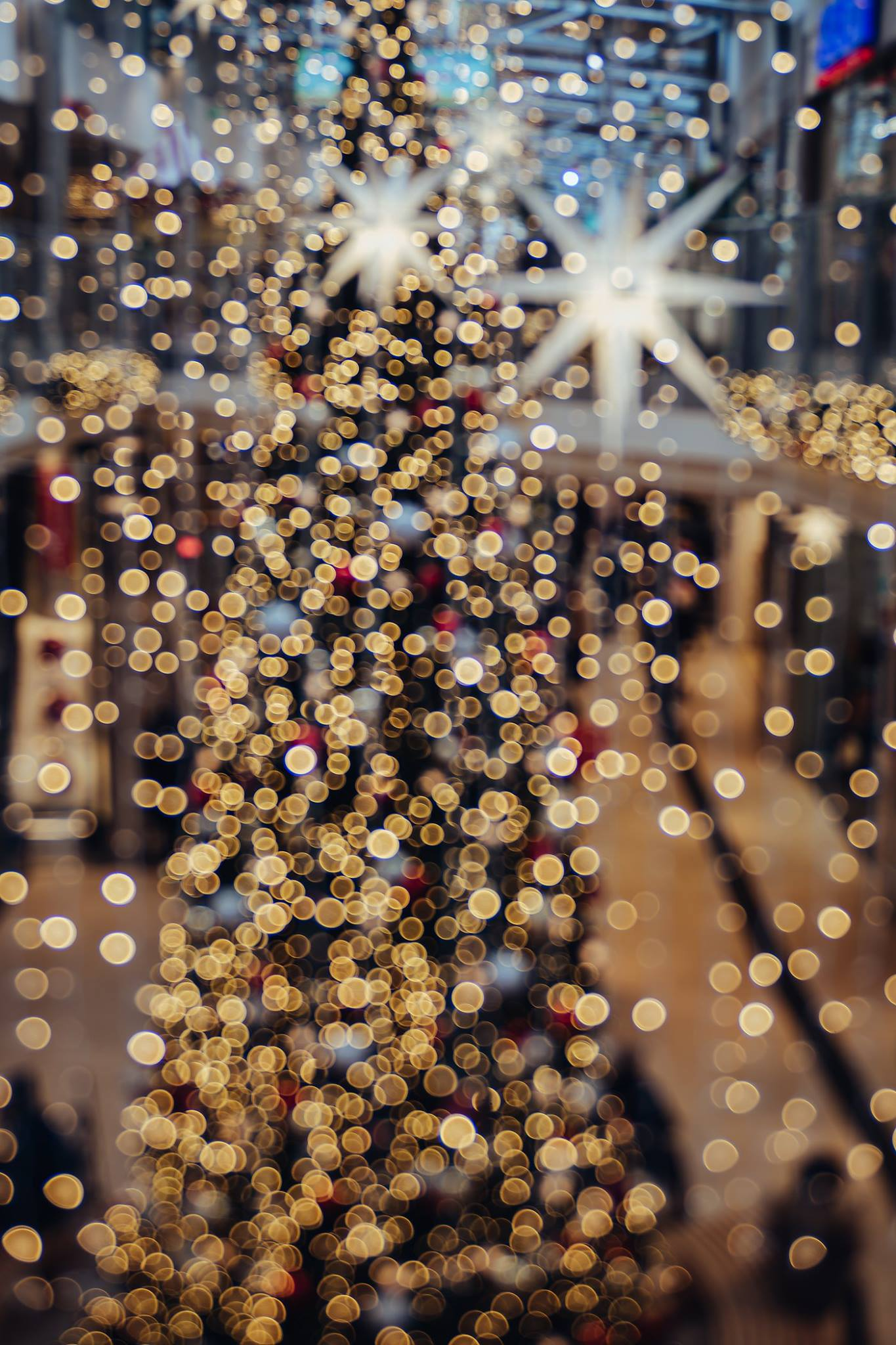 christmas holiday lights twinkling tree lights sparkle Lensbaby featured photos