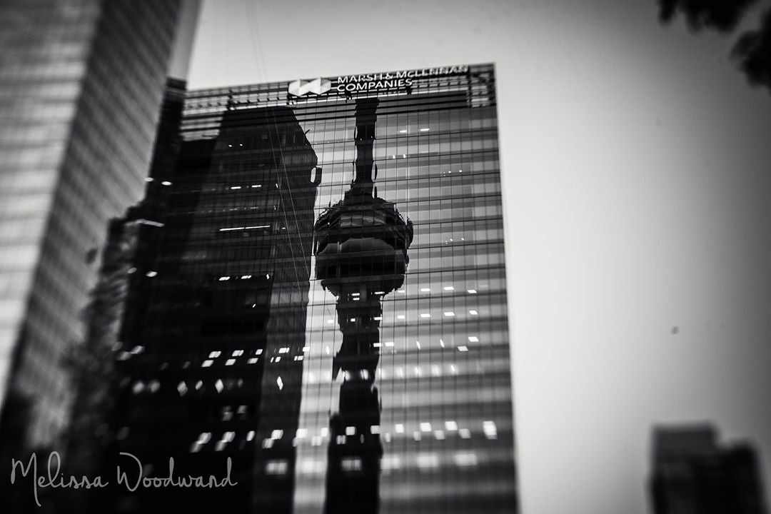 black and white skyscrapers reflection tall buildings photo of the week