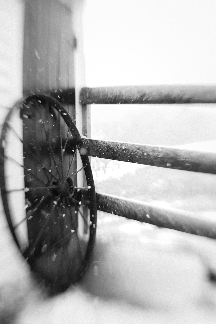 wagon wheel against wooden fence in snow selective focus photography journey story susan currie