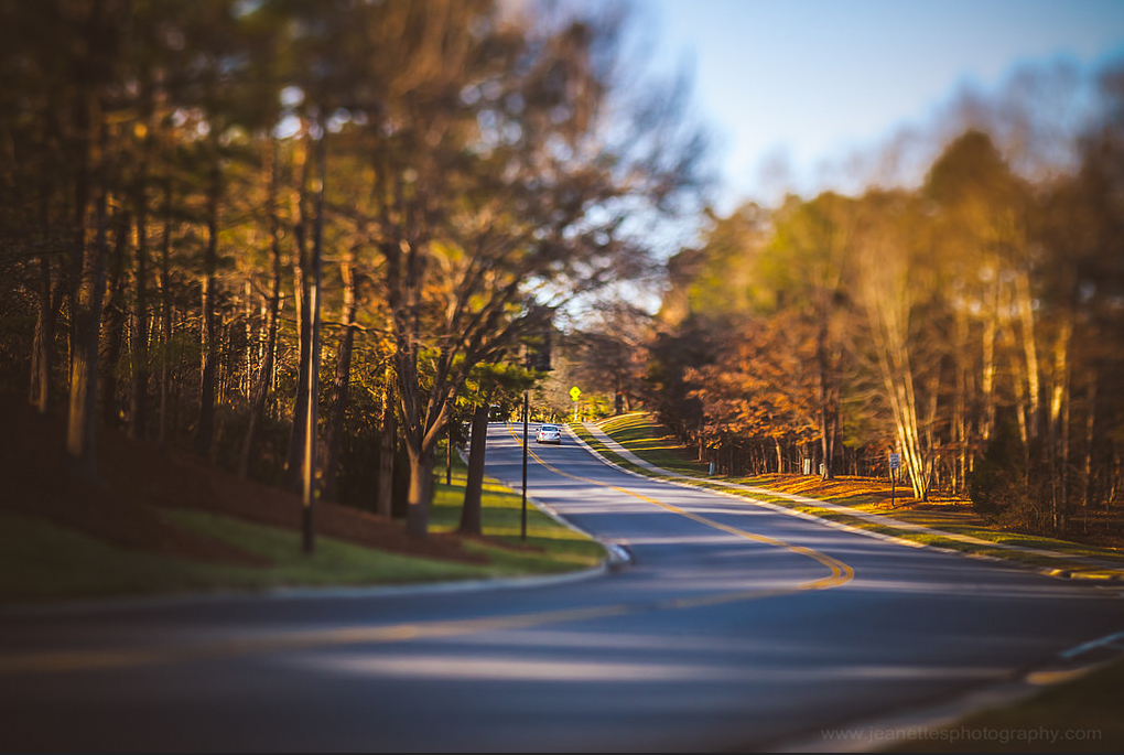 winding road with fall autumn trees shadows long way home empty road Lensbaby featured photos