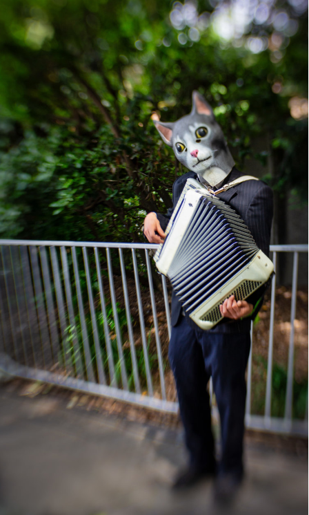 Man in cat mask playing the acordian