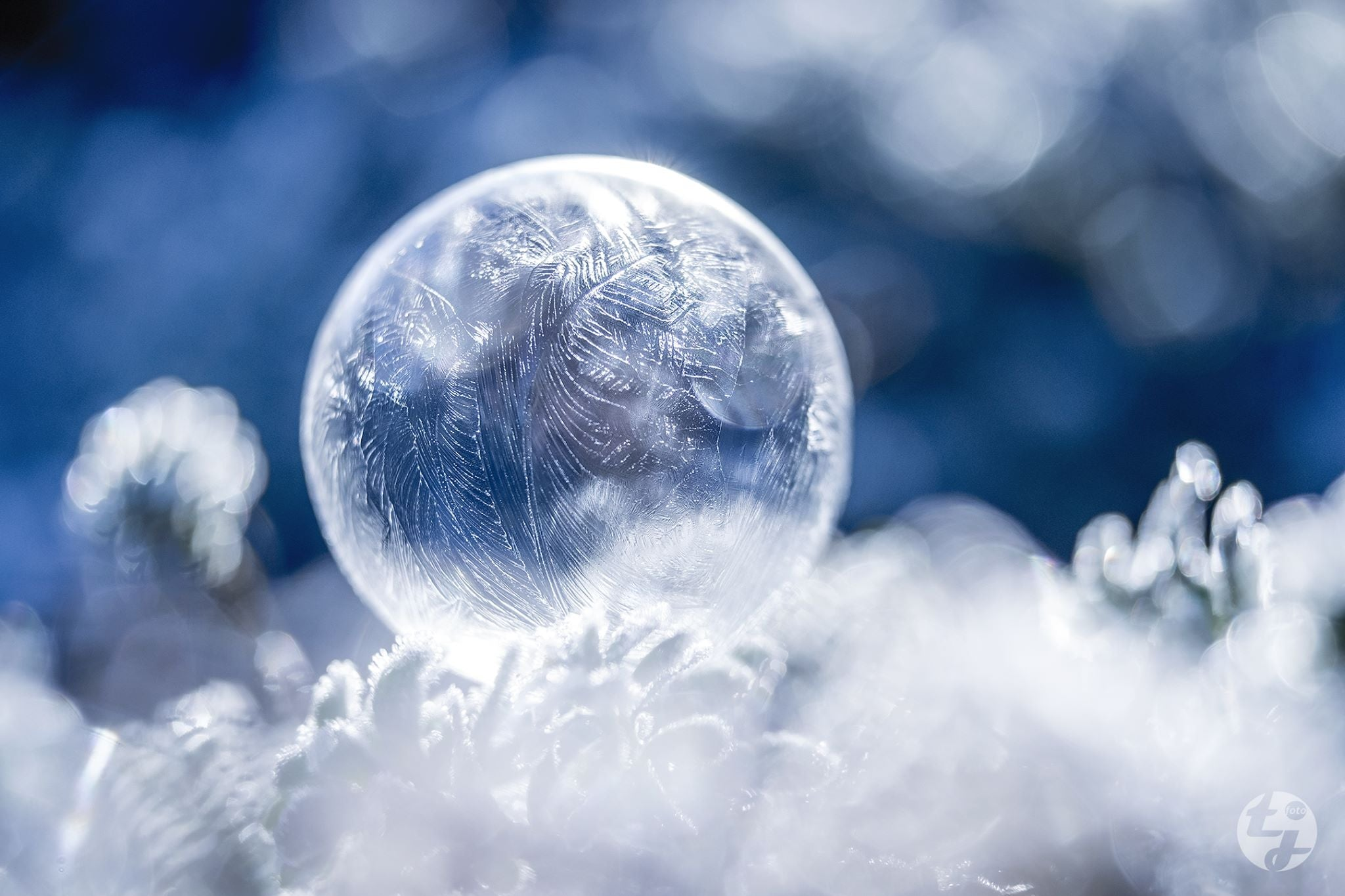 Frozen soap bubble swirly frosted crystals cold winter Lensbaby's featured photos