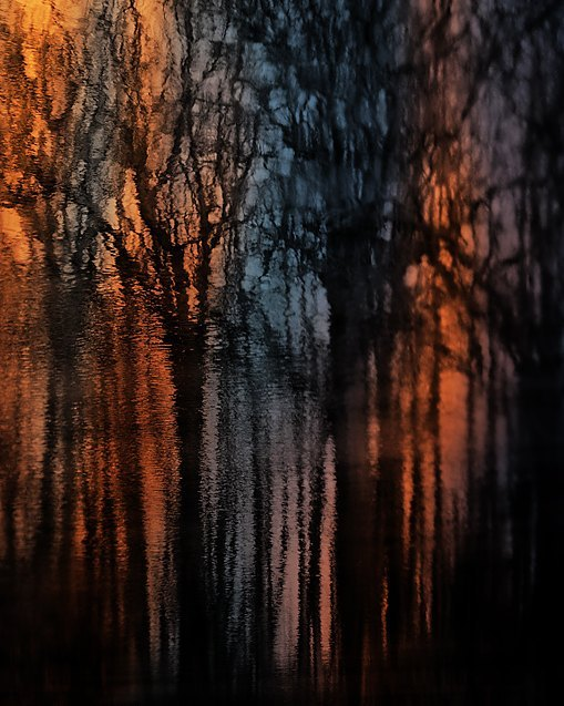 reflection of trees on water orange blue nature art featured photos of the week