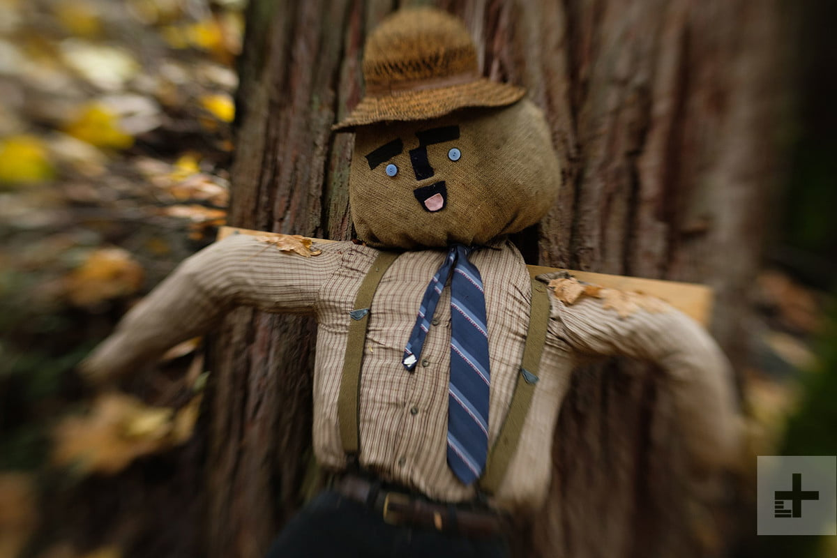 Scarecrow with straw hat blue tie and suspenders against big tree trunk Lensbaby Sweet 80 review