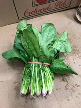 Load image into Gallery viewer, Fresh Spinach (Bunch)