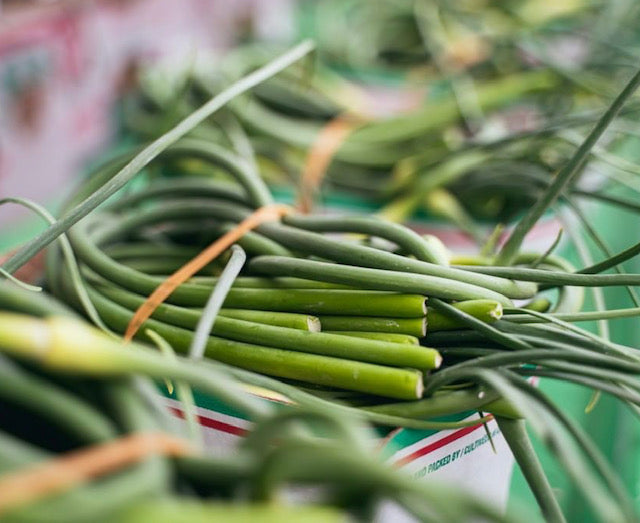 Garlic Scapes - 2lbs