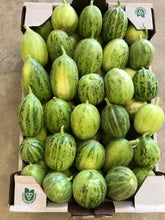Load image into Gallery viewer, CASE of Italian Cucumbers (Caroselli Barese) FLAT pack