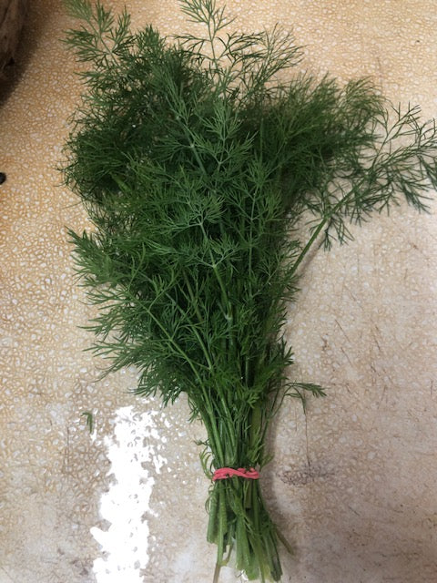 Cut Fresh Dill (bunch)
