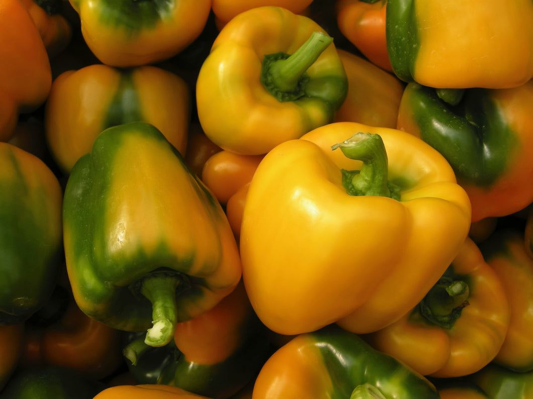 Sweet Bell Pepper- Yellow (per piece)