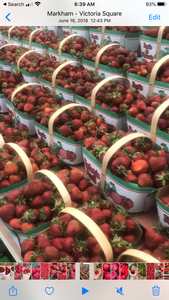 Strawberries (3L basket)