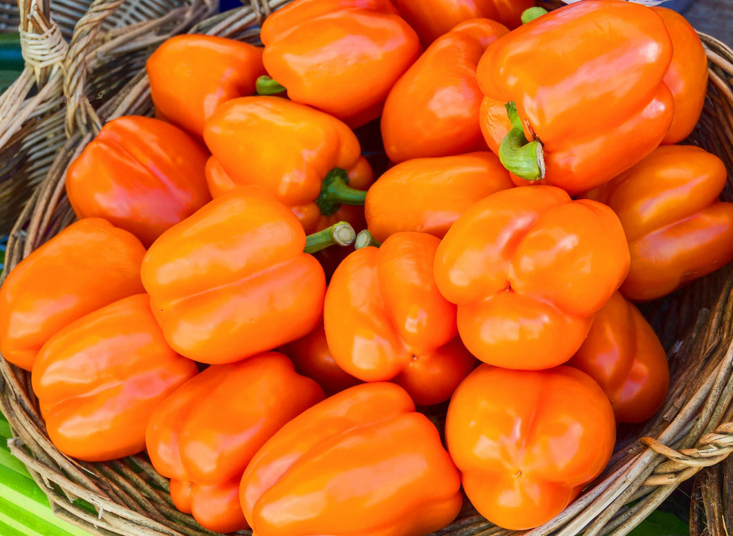 Sweet Bell Pepper- Orange (per piece)