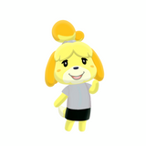 Custom College Isabelle