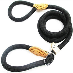 Rottweiler Chain  Leash Slip Collar