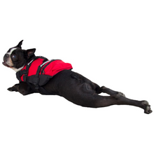 Load image into Gallery viewer, NRS CFD Dog Life Jacket, Red, XS