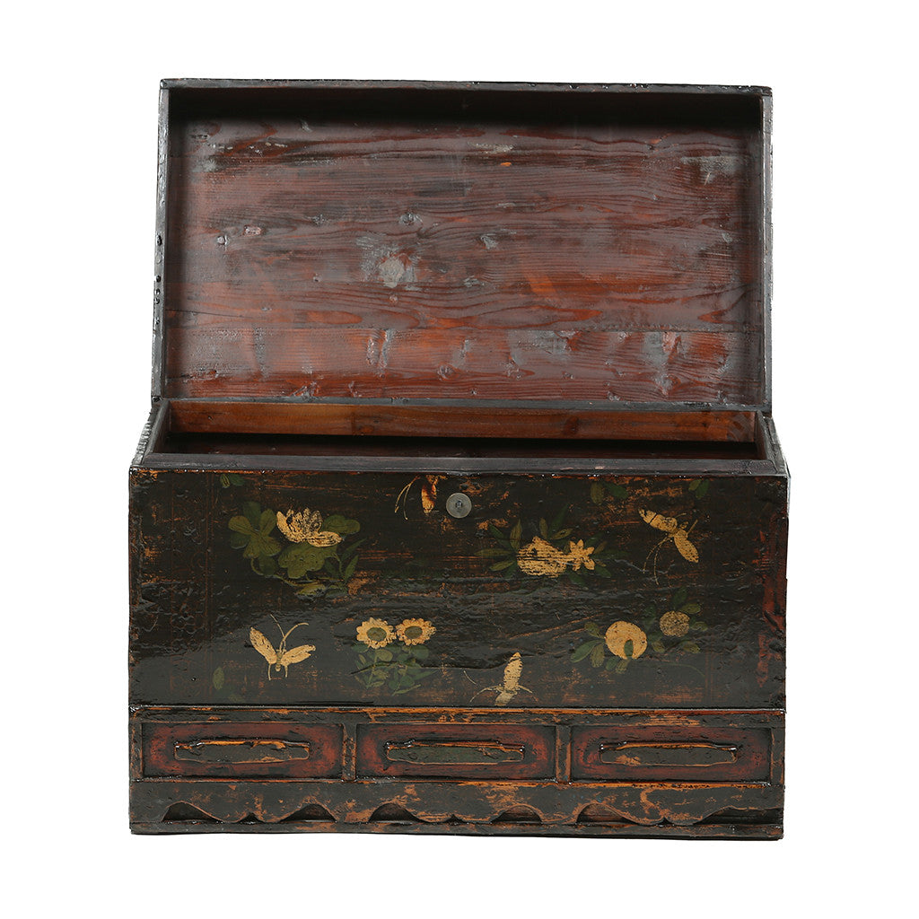 Vintage Chest from Gansu with Floral and Butterfly Motifs - open