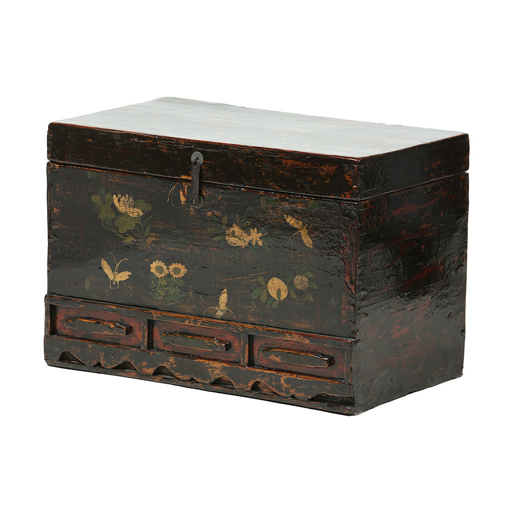 Vintage Chest from Gansu with Floral and Butterfly Motifs - side view