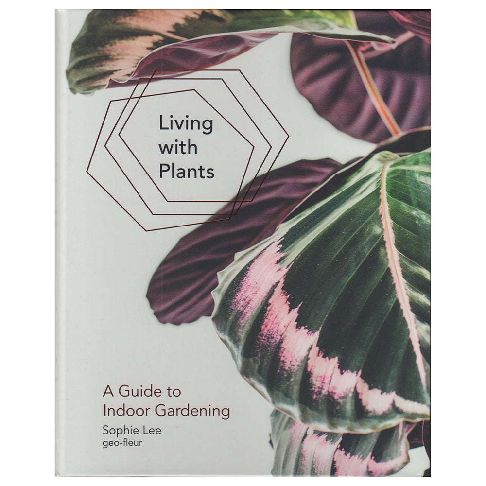 Living with Plants – a Guide to Indoor Gardening