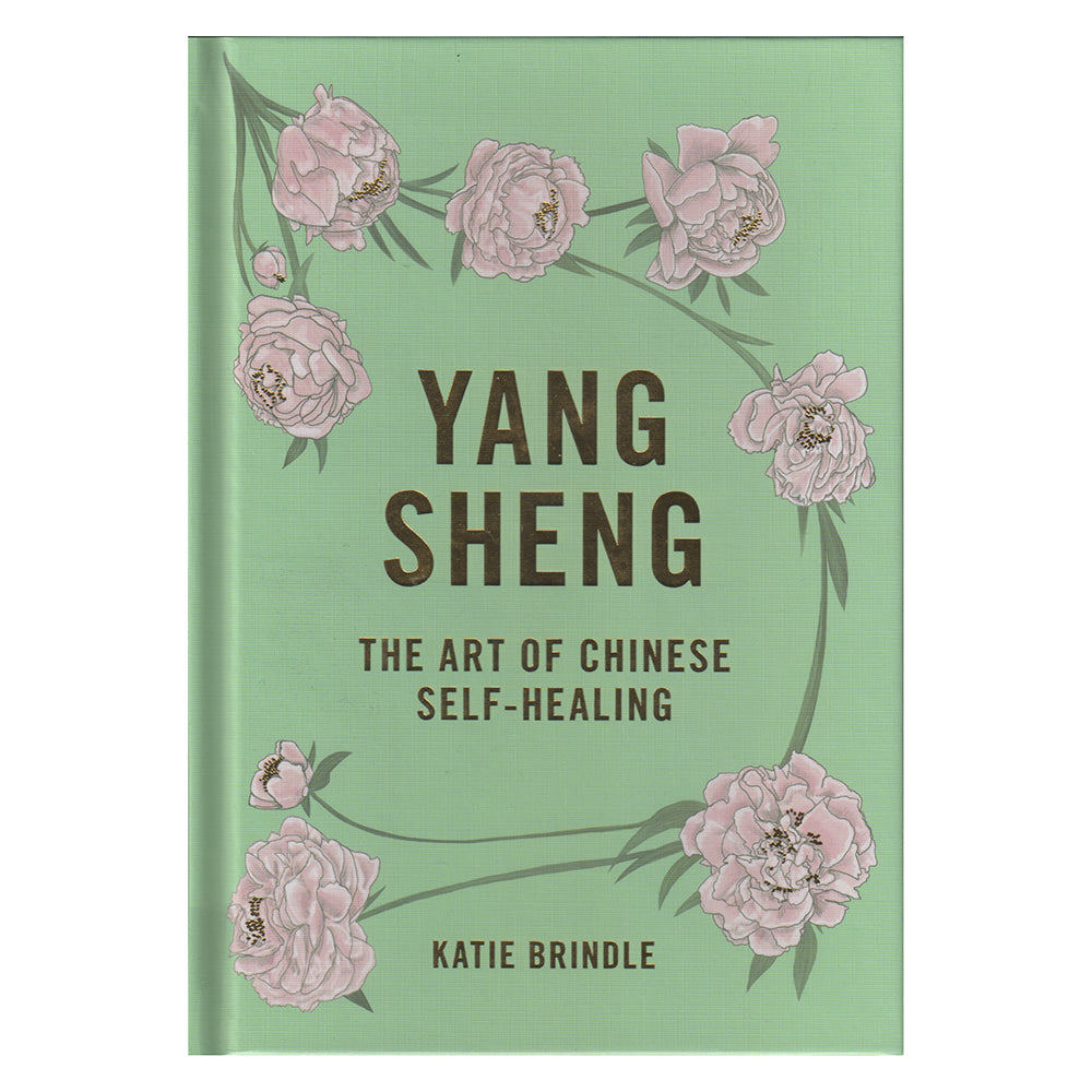 Yang Sheng - The Art of Chinese Self-Healing - Chinese homewares- Rouge Shop antique stores London - city furniture