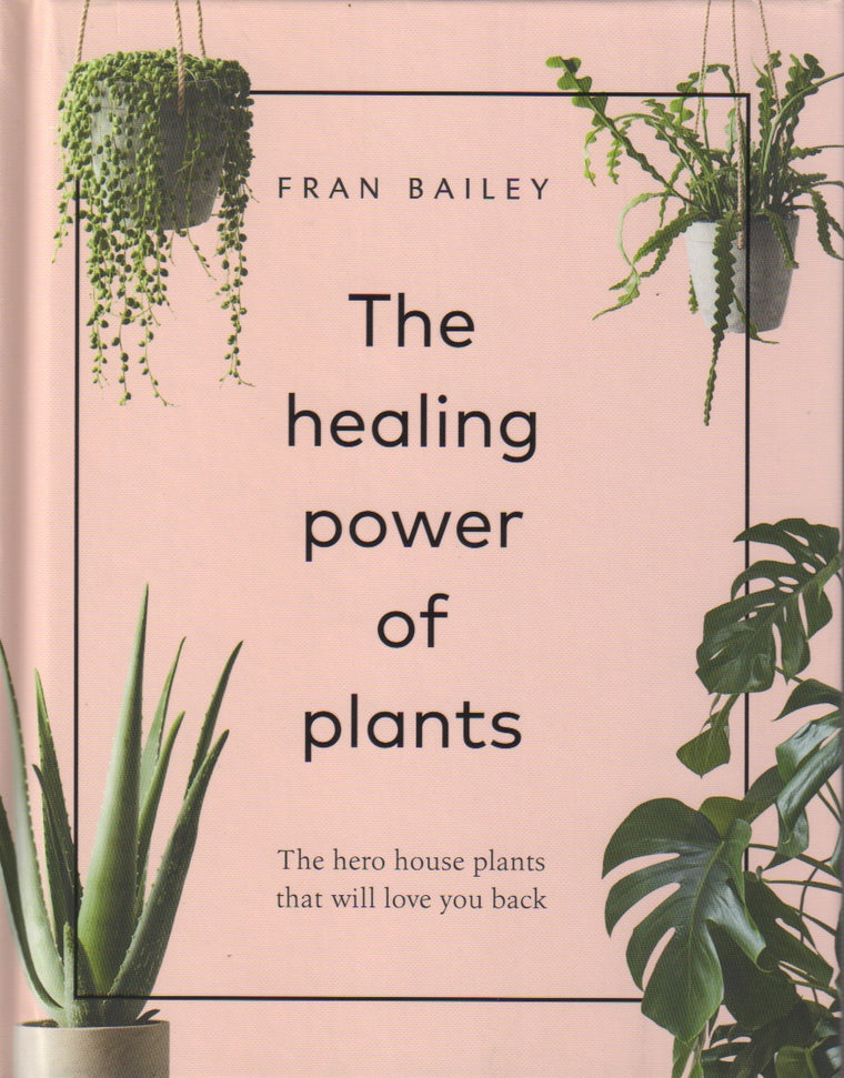 The Healing Power of Plants: The Hero House Plants that Love You Back