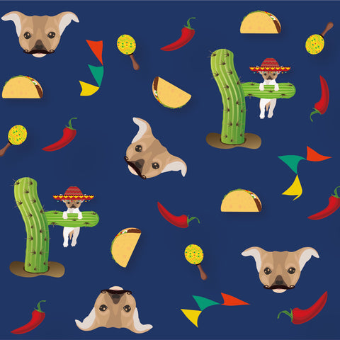 Pablo Taco Collection