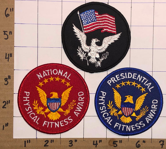 3 PRESIDENTIAL PHYSICAL NATIONAL FITNESS AWARD EAGLE USA UNITED STATES PATCH LOT