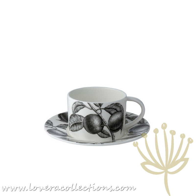 Twig New York Olive Market Cup and Saucer
